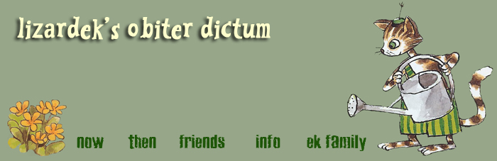 lizardek&#39;s obiter dictum