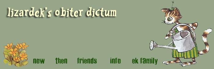 lizardek's obiter dictum